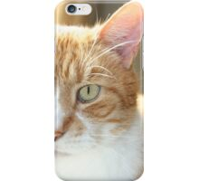 Leo the Lionhearted iPhone Case/Skin