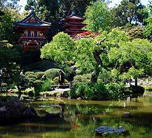 Japanese Tea Garden in San Francisco by Marjorie Wallace