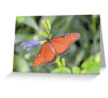 The Queen Butterfly Greeting Card