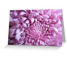 The very best of  Pink Greeting Card