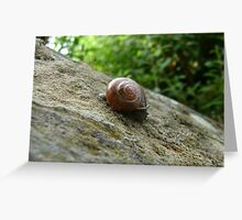 snail browsing Greeting Card