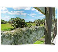 mossy fence Poster