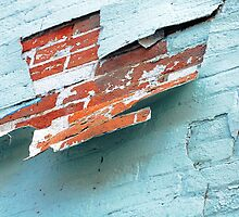 crack in wall, downtown toronto by Karin Lewis (Bookatz)