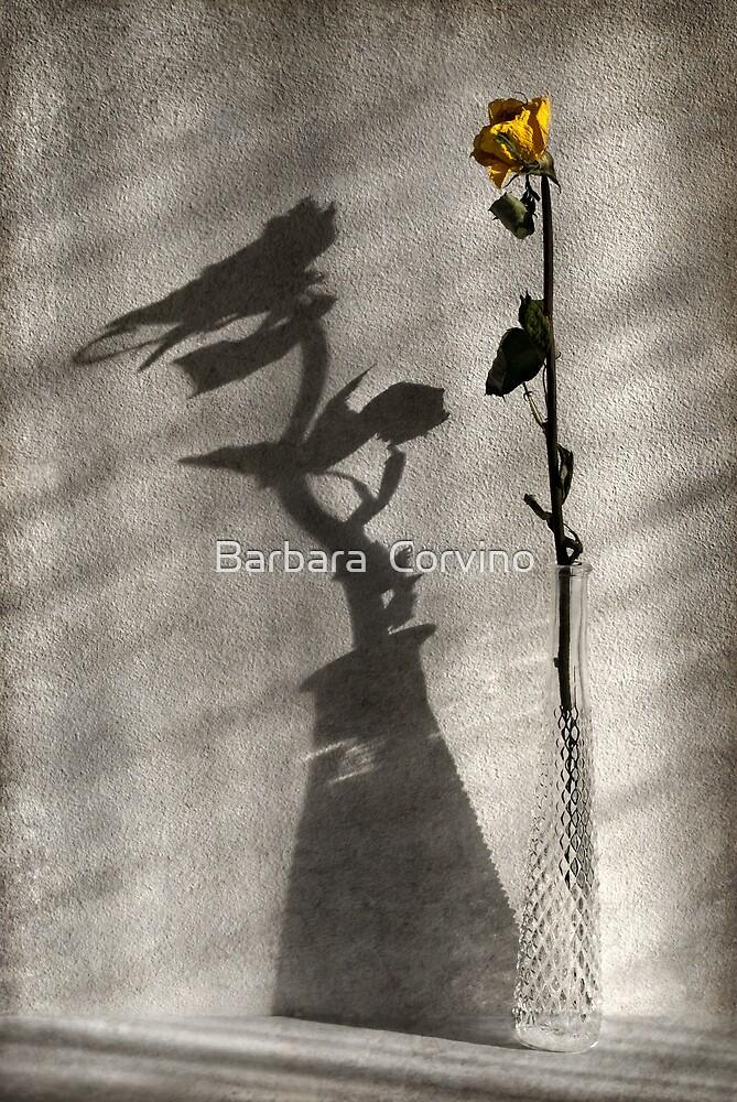 Behind the curtain by Barbara  Corvino