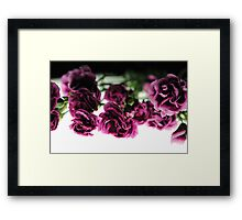 Pink Carnations on White Light Framed Print
