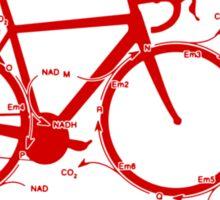 Krebs Cycle Bike Club Sticker