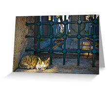 The Graveyard Cat Greeting Card