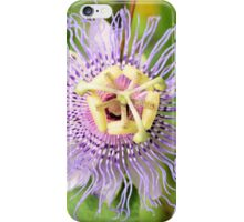 Passion Flower 3 iPhone Case/Skin