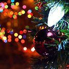 Holiday Lights by Brian Gaynor