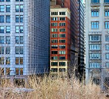 Windows of Chicago by Brian Gaynor