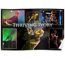 Thriving Ivory Poster Poster