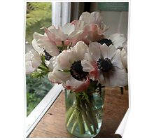 Anemones in a Mason Jar Poster