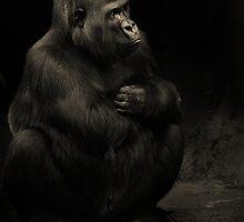 Darkness by DanielTMiller