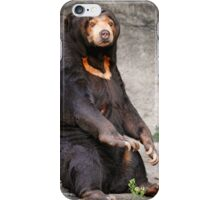Super Sun Bear