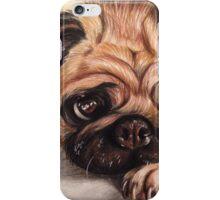 Hug A Pug iPhone Case/Skin