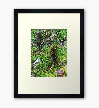 The Moss Wins Framed Print