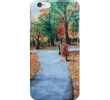 Park iPhone Case/Skin