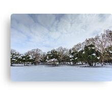 Snowscape. Photographed in the Golan Heights, Israel  Canvas Print
