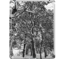 Close-up of pine leaves in snow.  iPad Case/Skin