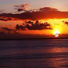 Sunset in Waikiki by Ellen Cotton