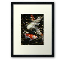 Swimming on Golden Currents Framed Print