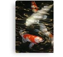Swimming on Golden Currents Canvas Print