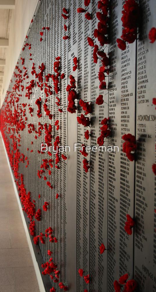 The Fallen - ANZAC's - Canberra - Australia by Bryan Freeman