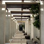The Long Walkway by Bryan Freeman