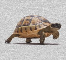 Marching Baby Tortoise Cartoon Vector Isolated Baby Tee