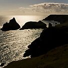 Evening Light by Richard Hamilton-Veal
