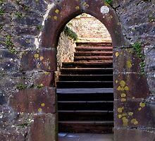 Castle Entrance by lezvee