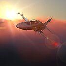 BAE Hawk at dusk by MarkSeb