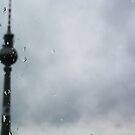 Rainy Berlin by willgill