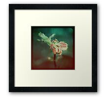 A Moment Lost Framed Print