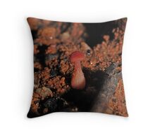 tiny little red mushy Throw Pillow