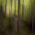 Impressionism 1 by Adriana Glackin