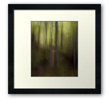Impressionism 1 Framed Print