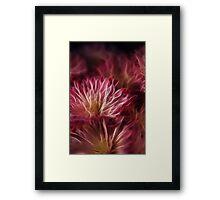 Pink Flower Lightning Framed Print