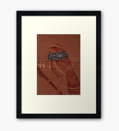 beardee birdee Framed Print