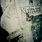 old newspaper by halina1601