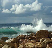 Fishery Bay, Eyre Peninsula by Caroline  Lloyd