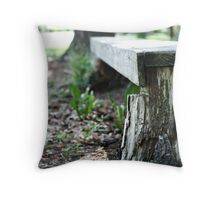 The Lonely Bench Throw Pillow