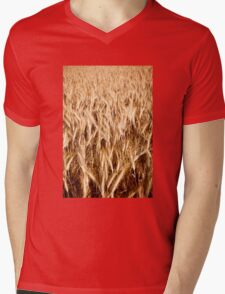 Plenty golden cereal grain ears Mens V-Neck T-Shirt