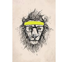 Hipster lion (light background) Photographic Print