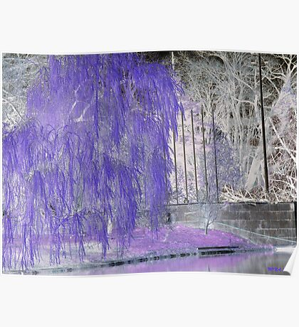 WEEPING IN PURPLE Poster