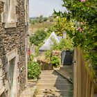 Down the Steps at Rochefort-en-Terre, France by Elaine Teague