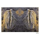 'Angels Wings' • Makawayan, Philippines by PETER CULLEY