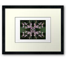 Orchid Quadro 0001 • Singapore Botanical Gardens Framed Print