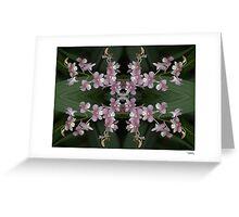Orchid Quadro 0001 • Singapore Botanical Gardens Greeting Card