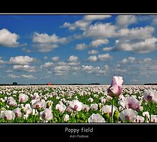 Poppy field by Adri  Padmos